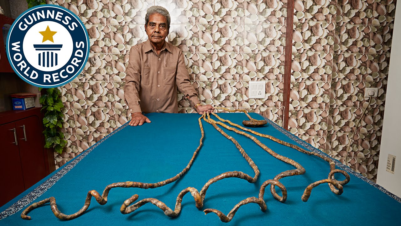 Longest fingernails on a single hand – ever,OMG-level World Record holders from India!-voxytalksy