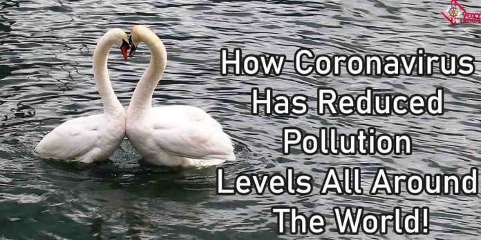 Coronavirus: How pollution levels have gone down everywhere!