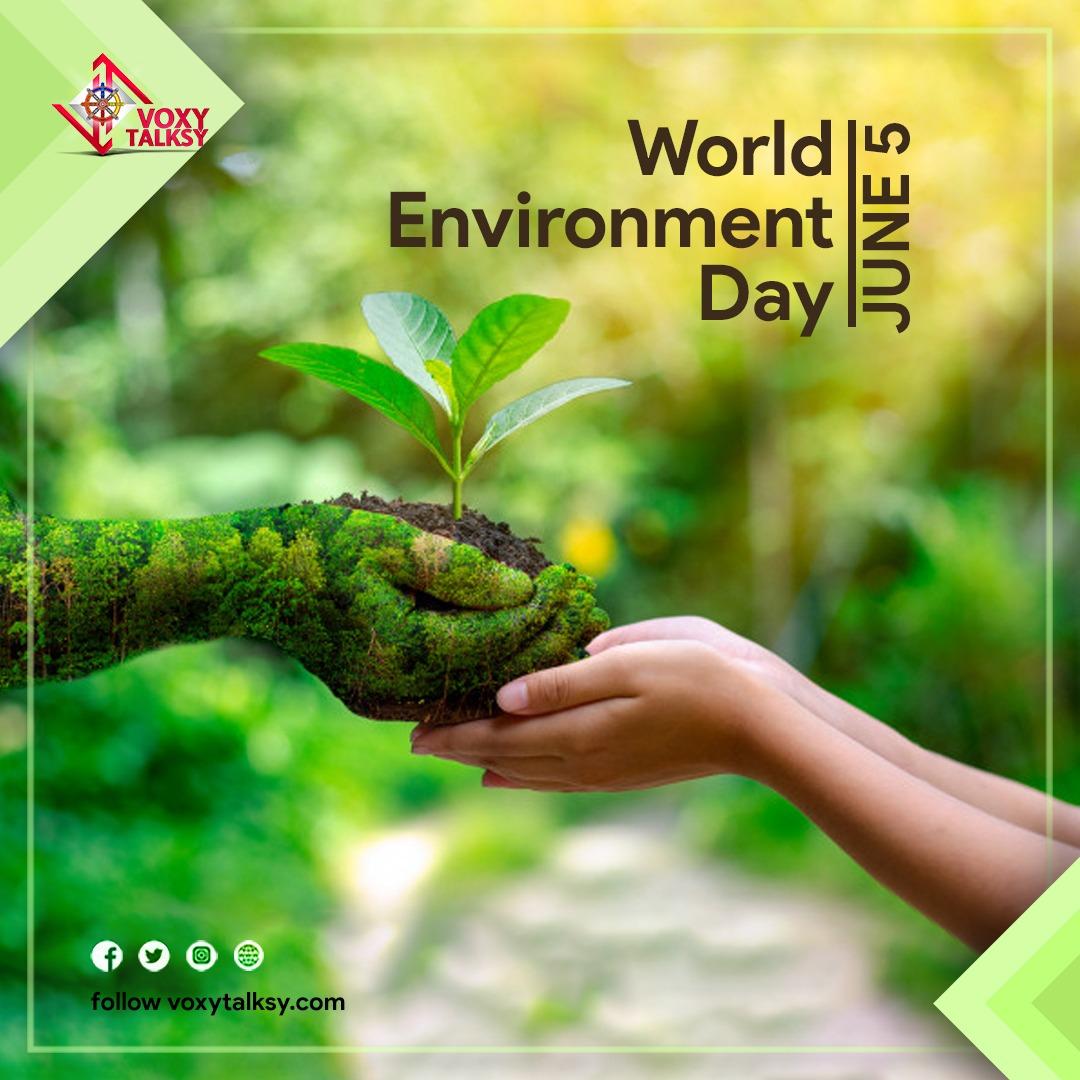 2020 World Environment Day: Wishes, Theme, Celebration | VoxyTalksy
