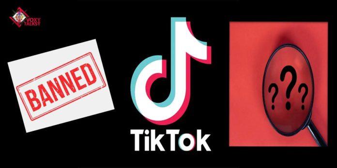 TikTok Ban In India: Everything You Need To Know! | 5 alternative apps to tiktok VoxyTalksy